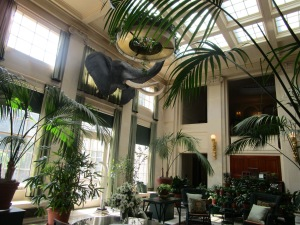 Inside the George Eastman House, Rochester, NY.